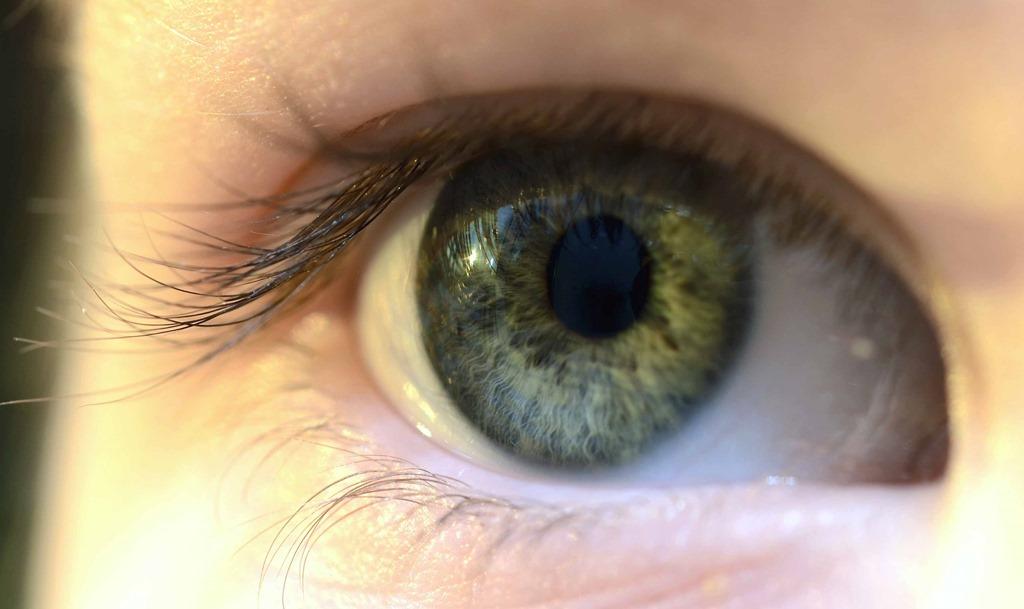 œil iridologie