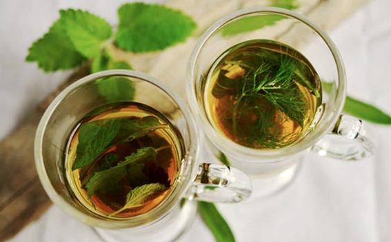 Tisanes boissons chaudes automne hiver menthe aneth infusion décoction bienfaits des plantes pour la santé