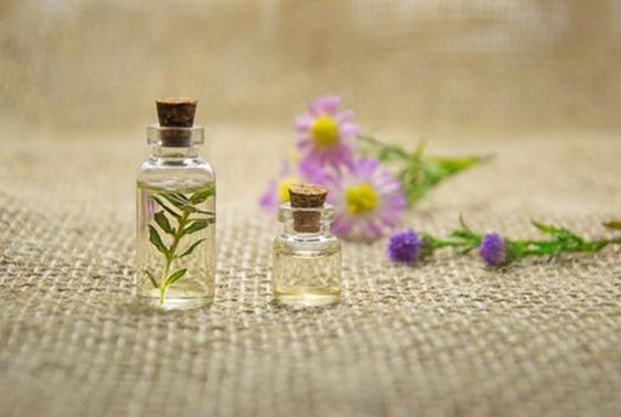 Elixirs floraux se soigner par les plantes